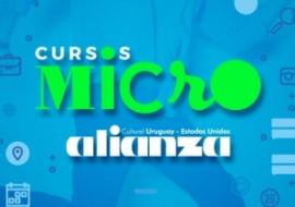 Cursos Micro