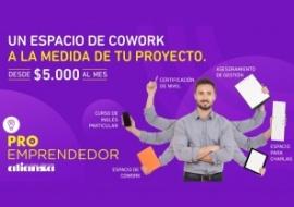 Alianza PROEmprendedor